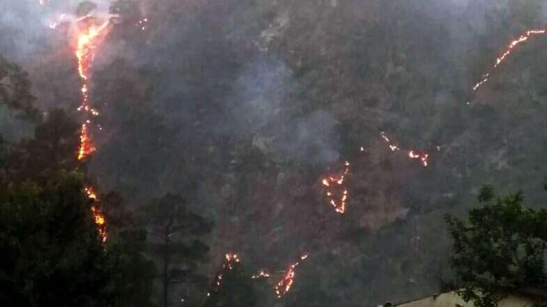 Uttarakhand Forest Fires: তীব্র দহনে জ্বলছে উত্তরাখণ্ডের বনাঞ্চল, দাবানল ছড়িয়ে পড়ার আশঙ্কায় বাসিন্দারা