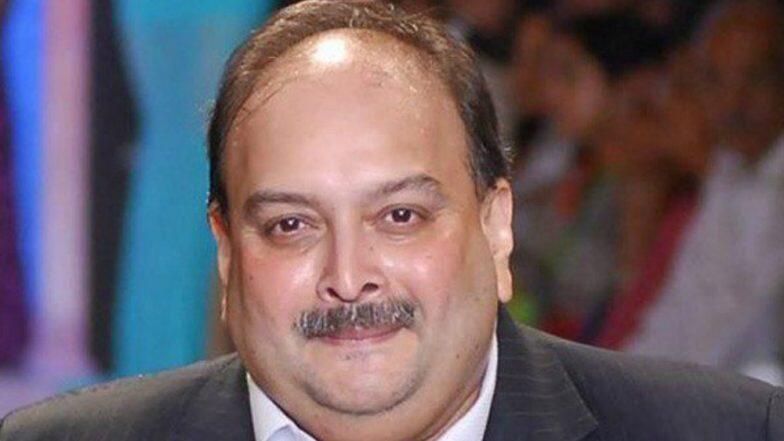 Mehul Choksi's Bail Rejected: ডোমিনিকার আদালতে খারিজ মেহুল চোকসির জামিনের আবেদন