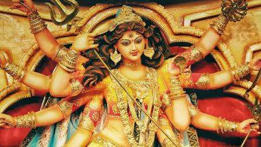 Durga Puja 2019: মহম্মদ আলি পার্কে হচ্ছে না দুর্গাপুজো,  কী বললেন মেয়র ফিরহাদ হাকিম?