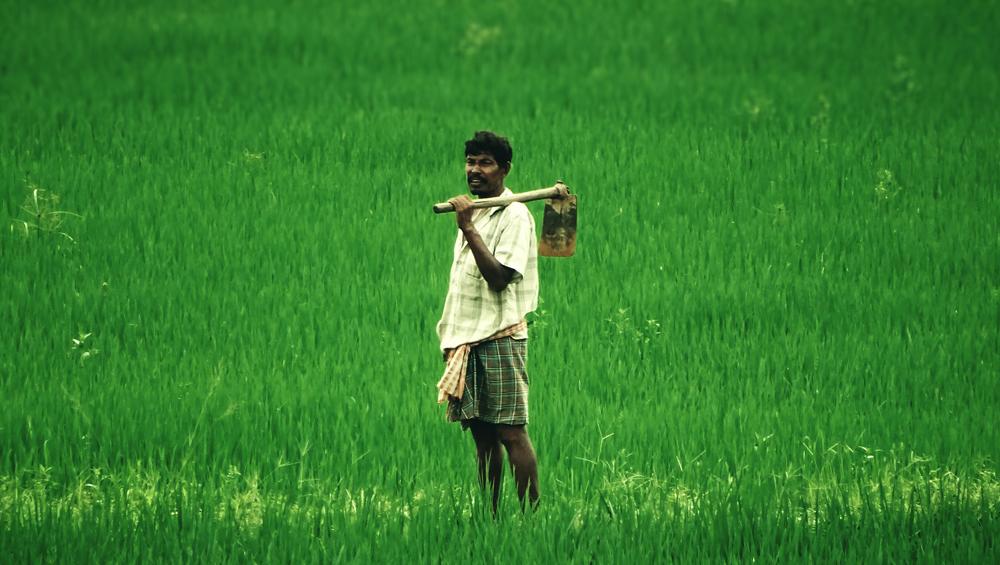 PM Kisan Samman Nidhi Scheme: আজই বাংলার কৃষকদের ব্যাঙ্ক অ্যাকাউন্টে ঢুকবে কৃষক সম্মান নিধি প্রকল্পের প্রথম কিস্তির টাকা