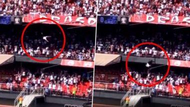 Viral: ব্রাজিলের ফুটবল স্টেডিয়ামের ৪০ ফিট ওপর থেকে পরে পা ভাঙলেন ফুটবলপ্রেমী, দেখে নিন ভিডিও