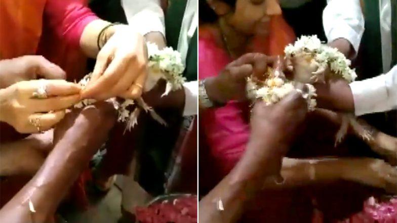 Bhopal: ব্যাঙের বিয়ে দিয়ে বৃষ্টি চাওয়া হয়েছিল, অত্যধিক বৃষ্টির জ্বালায় এবার সেই ব্যাঙ যুগলের ডিভোর্স দেওয়া হল
