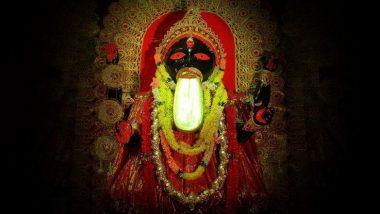 Types Of Kali: দক্ষিণা কালী থেকে করুণাময়ী, শক্তির আরাধনার আগে জেনে নিন মা কালীর কত রূপ