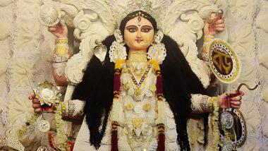 Jagadhatri Puja 2019: কাজের চাপে যেতে পারেননি? দেখে নিন চন্দননগরের জগদ্ধাত্রী প্রতিমার ছবি