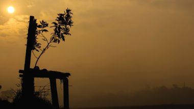 West Bengal Weather Update: পারদ নামছে, তবে ঠান্ডায় হাড় হিম হওয়ার পালা কবে শুরু হচ্ছে?