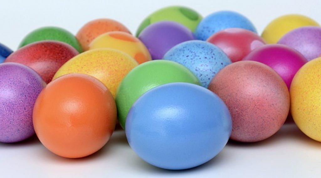 Plastic Eggs: কলকাতার হোটেলের খাবারে প্লাস্টিক ডিম? তদন্তে পুলিশ