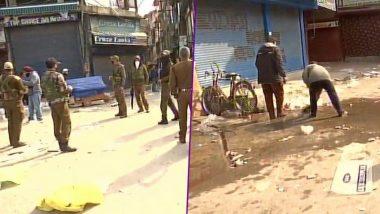 Jammu And Kashmir: ফের রক্তাক্ত উপত্যকা, শ্রীনগরে গ্রেনেড হামলায় মৃত ১ মহিলা, আহত ১৩