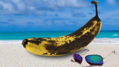 Skin Damage Prevention: সানস্ক্রীন ব্যবহার না করেও বাঁচাতে পারেন আপনার ত্বক, রইল এই ৩ টি টিপস