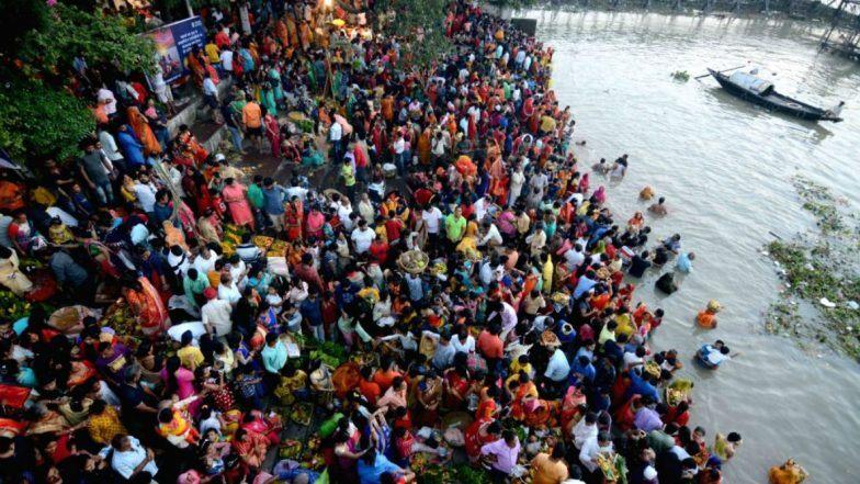 Rabindra Sarobar: ছটের পরদিন ব্যাপক দূষণে রবীন্দ্র সরোবরের জলে ভেসে উঠলো মরা মাছ, কচ্ছপ