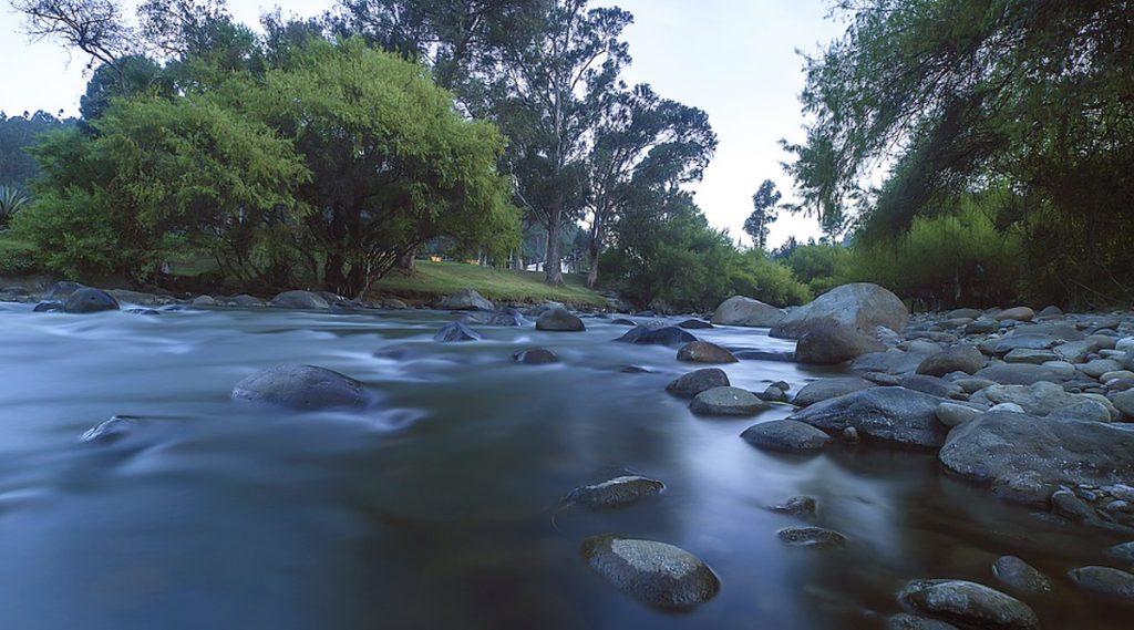 Australia: ভোদকা, বিস্কুট খেয়ে প্রাণে বেঁচেছেন, উদ্ধার হলেন হারিয়ে যাওয়া ২ ভ্রমণার্থী