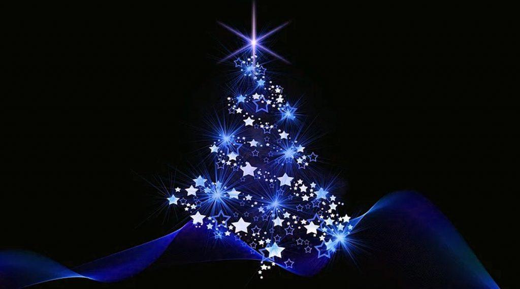Christmas 2019: ক্রিসমাস ট্রি সম্পর্কে এই তথ্যগুলো জানতেন?