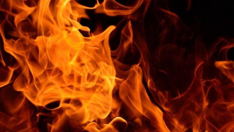 Fire at Kolkata: রাতের কলকাতায় ফের অগ্নিকাণ্ড, বৌবাজারের এলআইসি বিল্ডিংয়ে আগুন লেগে অগ্নিদগ্ধ ৩