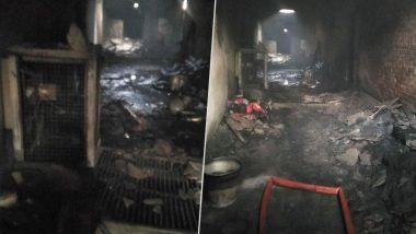 Delhi Fire Incident: উপহার সিনেমা থেকে করলবাগ, এক নজরে দিল্লির ভয়াবহ অগ্নিকাণ্ড