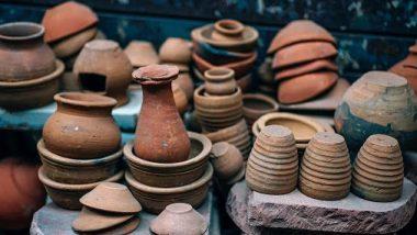 Malda: মাটির হাঁড়ি, কাঠের খুন্তি, কলাপাতার মত সামগ্রী দিয়েই জমিয়ে পরিবেশবান্ধব পিকনিকে মাতলেন মালদাবাসীরা