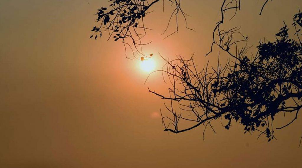 Makar Sankranti: মকর সংক্রান্তি ঘিরে জড়িয়ে রয়েছে এই সব পৌরাণিক কাহিনী