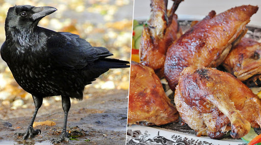 Crow Meat Selling As Chicken Meat: তামিলনাড়ুতে চিকেন বলে বিক্রি হচ্ছে কাকের মাংস! গ্রেফতার ২