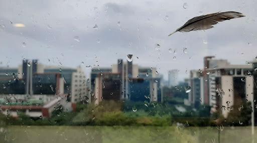 West Bengal Weather Update: সরস্বতী পুজোয় বৃষ্টি, কাল থেকেই মাঘের বর্ষণে ভাসবে দুই বঙ্গ