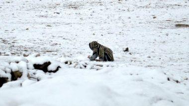 Snowfall and Flash Flood in Pakistan: প্রবল তুষারপাত, বৃষ্টি, অকাল বন্যায় পাকিস্তানে মৃত ৩০