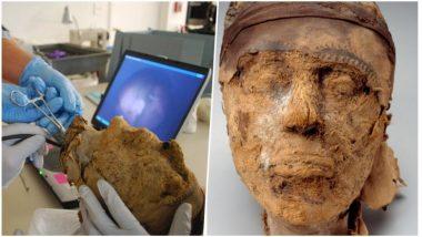 Mummy Speaks After 3000 Years: কথা বলে উঠল তিন হাজার বছরের পুরনো মমি!