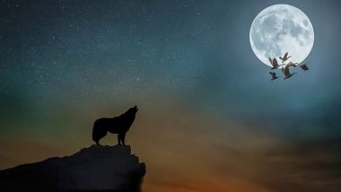 Wolf Moon 2020 on Jan 10: রাত পোহালেই বছরের প্রথম চন্দ্রগ্রহণ, কখন কীভাবে দেখবেন?