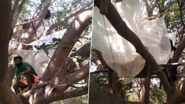 Youths Quarantined Themselves On Tree : বাড়িতে আলাদা ঘর নেই, পুরুলিয়ায় গাছের ডালে মাচা করে কোয়ারান্টাইনে কেরালা ফেরত ৭ যুবক!