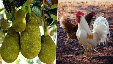 Coronavirus Impact On Poultry: মুরগির বদলে বাড়ছে কাঁঠালের চাহিদা, আকাশছোঁয়া দাম, কিলোপ্রতি বিকোচ্ছে ১২০-তে