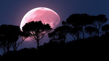 Pink Super Moon: রাতের আকাশকে গোলাপি করে তুলবে পিঙ্ক সুপারমুন; জানুন কখন, কোথায় দেখা যাবে এই চাঁদ?