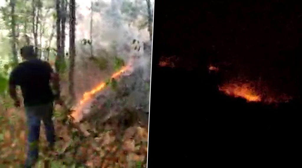 Bankura Susunia Hill Fire: জ্বলছে বাঁকুড়ার শুশুনিয়া পাহাড়