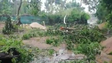 Cyclone Amphan: আম্ফান ঘূর্ণিঝড়ের কাণে ক্ষতিগ্রস্ত ওড়িশার উপকূলের জেলাগুলি, মৃত ২