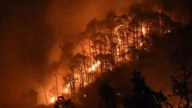 Forest Fire in Uttarakhand: উত্তরাখণ্ডে ভয়াবহ দাবানল, আগুনে পুড়ে ছাই ৭১ হেক্টর বনভূমি