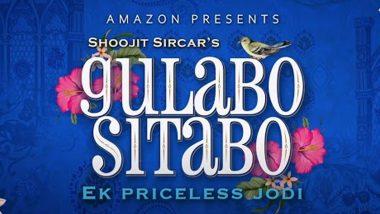 Gulabo Sitabo Movie: মির্জা-ব্যাঙ্কির কেমিস্ট্রিতে প্রেমে পড়া নিশ্চিত! অ্যামাজন প্রাইমে দেখে ফেলুন চটপট