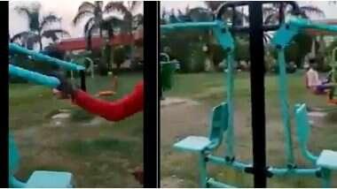Ghost at Jhansi's Park: ঝাঁসির পার্কে জিম করছে ভূত! জেনে নিন আসল সত্যিটা কী? দেখুন ভিডিও