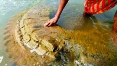 Odisha: মহানদীর জলে ডুবে থাকা ৫০০ বছরের শতাব্দী প্রাচীন মন্দিরের উত্থান