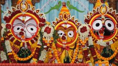 Mahesh Rathayatra: করোনার মাঝে কেমন চলছে মাহেশের রথযাত্রা