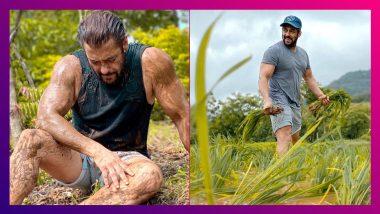 Salman Khan: লকডাউনে ফার্মহাউজে চাষবাস করছেন ভাইজান