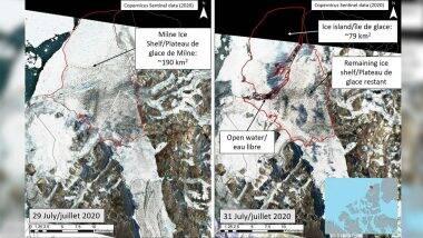 Canada's Last Fully Intact Ice Shelf Breaks: জলবায়ূ পরিবর্তনের জের, কানাডার শেষ সুবিশাল হিমশৈলও ভাঙল