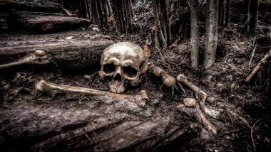 1,500 Human Bones Found in Osaka's Umeda Tomb: জাপানে গণকবর থেকে পাওয়া গেল দেড় হাজার কঙ্কাল