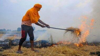 Stubble Burning by Farmers in Punjab And Haryana: পঞ্জাব, হরিয়ানায় বিঘার পর বিঘা চাষের জমি জ্বলছে, ছবি প্রকাশ NASA-র