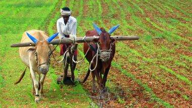 Essential Commodities (Amendment) Bill 2020 Passed in Rajya Sabha: চালু-ডাল-আলু-পেঁয়াজ বাদ পড়ল অত্যাবশ্যকীয় পণ্যের তালিকা থেকে, এই বিল সম্পর্কে জেনে নিন বিস্তারিত