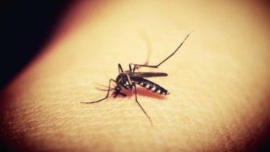 Cat Que Virus: ফের বিপদের নাম চিন, নয়া ক্যাট-কিউ-ভাইরাস নিয়ে কেন্দ্রকে সতর্ক করল আইসিএমআর