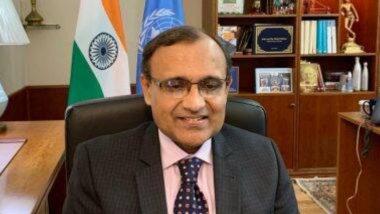 India Thanks UNSC Members: ২ ভারতীয়কে পাকিস্তানের জঙ্গি প্রমাণের প্রচেষ্টা ব্যর্থ করার জন্য রাষ্ট্রপুঞ্জের সদস্যদের ধন্যবাদ নয়াদিল্লির