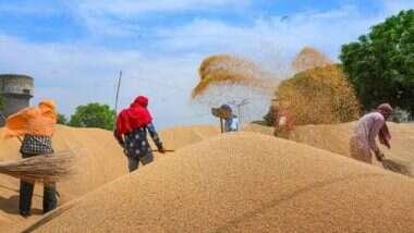 MSP on Wheat Hiked: কৃষি বিল প্রতিবাদের মাঝেই বাড়ল গমের এমএসপি, প্রতি কুইন্টাল ৫০ টাকা থেকে বাড়িয়ে করা হল ১,৯৭৫ টাকা
