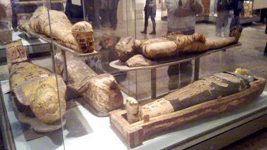 Egypt: মিশরের সাক্কারাতে মিলল ২,৬০০ বছরেরও বেশি পুরোনো ৫৯টি কফিন, রয়েছে মমিও