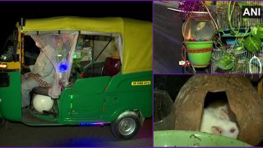 Auto Converts Into a Garden: গাছপালা, মাছ, খরগোশ মিলেমিশে মিনি-জু হল অটো
