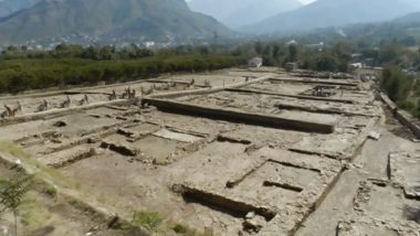 Lord Vishnu's Temple Discovered In Pakistan: প্রায় ১৩০০ বছরের পুরনো বিষ্ণু মন্দির আবিষ্কৃত পাকিস্তানের সোয়াত উপত্যকায়
