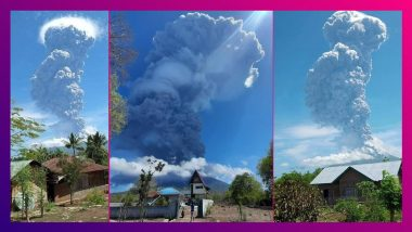 Indonesia's Lewotolok Volcano Erupts: আগ্নেয়গিরিতে ভয়ঙ্কর অগ্নুৎপাত, ৪ কিমি উচ্চতায় উঠল ছাই