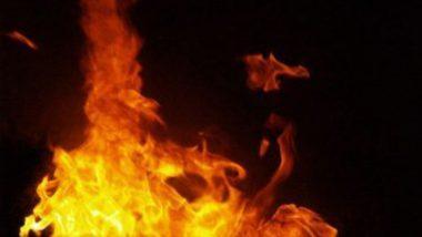 Rajkot Fire: রাজকোটের কোভিড হাসপাতালে ভয়াবহ অগ্নিকাণ্ড, মৃত ৫