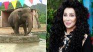 World's Loneliest Elephant: পৃথিবীর 'সবচেয়ে নিঃসঙ্গ' হাতিকে ইসলামাবাদ থেকে কম্বোডিয়া পাঠানোর দায়িত্ব নিলেন মার্কিন পপ গায়িকা শের