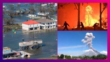 10 Deadliest Natural Disasters In 2020: পঙ্গপাল হানা, উত্তরাখণ্ডের দাবানল! বিভীষিকার ২০২০