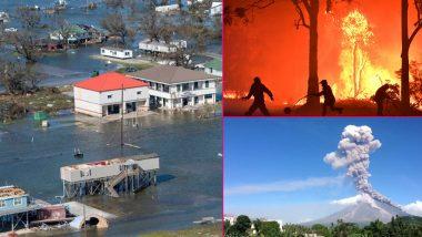 10 Deadliest Natural Disasters In 2020: পঙ্গপাল হানা, উত্তরাখণ্ডের দাবানল! আতঙ্কের ২০২০